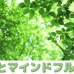 「禅」と「マインドフルネス」の違い!「瞑想」の効果とは?