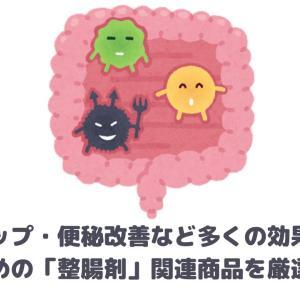 おすすめの「整腸剤」関連商品を厳選紹介!【免疫力アップ・便秘改善など多くの効果を期待!】