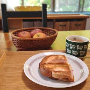 春キャベツのお好み焼き、最近のおうちご飯とその効能