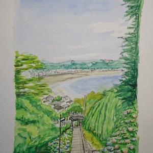 2021.6.22 : 成就院前の階段の紫陽花
