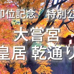 【11/21~】大嘗宮・皇居乾通り 特別公開ツアー特集
