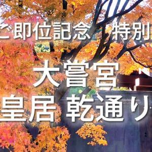 【11/30~】令和初の公開!皇居乾通り紅葉の一般公開と新オープンのオリンピックミュージアム&紅