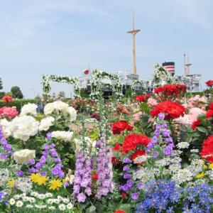 横浜市助成50%+GoToトラベル35% 秋バラと大型客船ロイヤルウイングスイーツクルーズ&海と