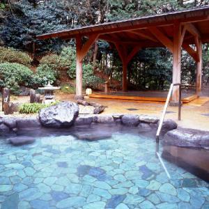 【1/2】正月恒例の駅伝観戦バスツアー ~箱根で応援!湯本富士屋ホテルで温泉入浴と豪華ランチバイ