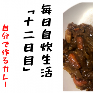 【自炊男子】毎日自炊生活「十二日目」18歳男子学生が作る絶品カレー