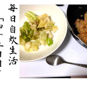 【レシピ】居酒屋風おつまみキャベツとキムチ炒飯で優勝する。毎日自炊生活「四十二日目」