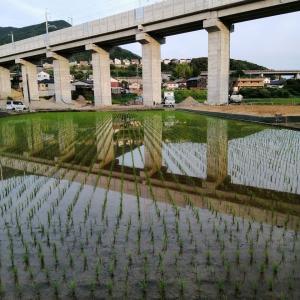 長崎新幹線橋梁