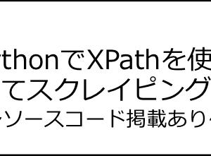 【コピペOK】PythonでXPathを使ってスクレイピングする手順