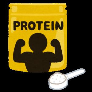 プロテインは筋肉のためだけではない!