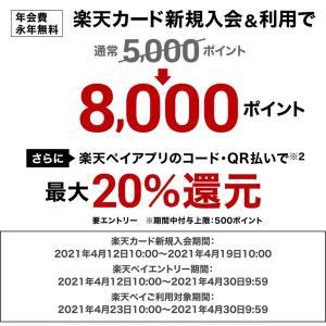 今ですよ!!【4/19 10時まで】楽天カード♡今なら【8,000】ポイント。