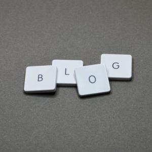 ブログ運営報告(50記事達成、5か月目へ突入記念)現時点でのPVや収益は?