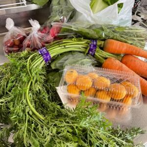 充実野菜生活!