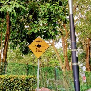 朝散歩で見つけたもの④道路標識編inクアラルンプール