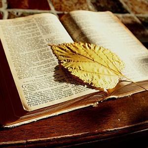 聖書が元ネタと考えられるアニメ9選を紹介!