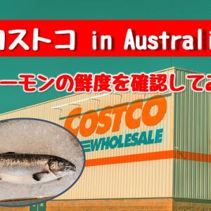 オーストラリアのコストコ で売っている激安サーモンの鮮度を確認してみた