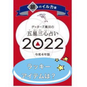 【2022年】銀のイルカ座にオススメのアイテム【五星三心占い】