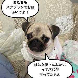 藤原紀香さんと同じ物&桃は女優?