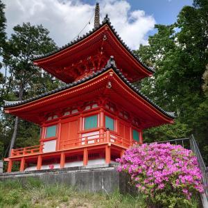 【寺院・神社】頭の観音様 今熊野観音寺で「ぼけ封じ/頭痛封じ」のご利益を受ける