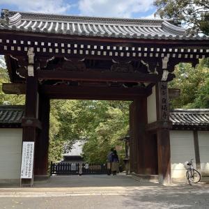 【寺院・神社】京都東山 泉涌寺エリアの神社仏閣5選