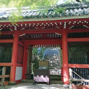 【寺院・神社】京都西山の秘境?青もみじがキレイな「金蔵寺」