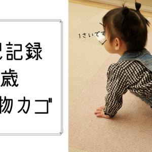 1歳女の子イラスト記録☆買い物カゴ