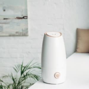 【最新2021】オフィス用卓上加湿器 人気おすすめランキング5選