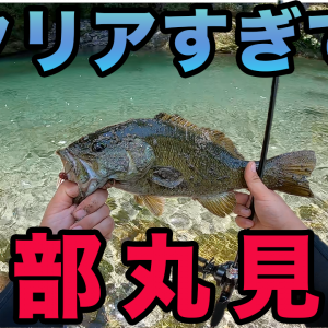 7月30日(金)17時動画公開