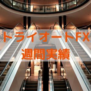 【トライオートFX】週間実績 2021年6月14日週 週間損益:0円