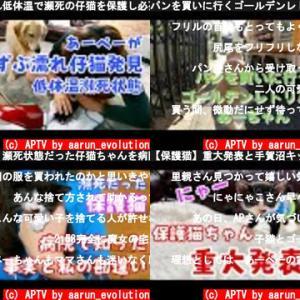 APTV by aarun_evolution(おすすめch紹介)