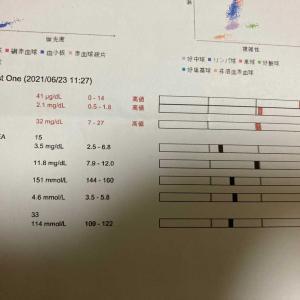 血液検査&血圧の定期検診