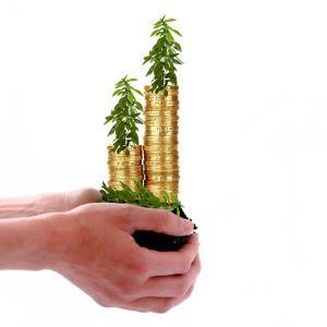 Via(ヴィア)の保有する投資信託4選♪運用率も分散投資を重視。