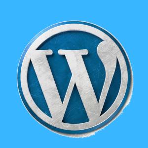 【所要時間10分】WordPressブログの始め方と開設方法を教えます。