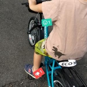 自転車デビューはいつ?いつから乗れる?ブリヂストンのエコキッズ口コミ!おすすめの子ども用自転車。3歳7ヶ月、コマあり。