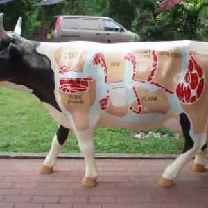 美味しそうな牛