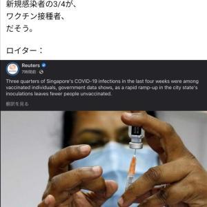 在新加坡,3/4 的新感染者接种了疫苗。