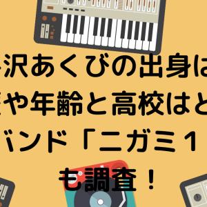 平沢あくびの出身は?学歴や年齢と高校はどこ?所属バンド「ニガミ17才」も調査!