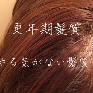 【更年期髪質】赤ちゃんの毛?ベビーヘア?!