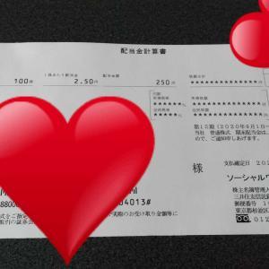 ソーシャルワイヤー(3929)配当金&優待