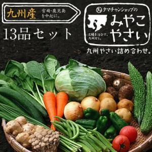 九州野菜セットが1000円OFF!今だけ卵のおまけ付き!