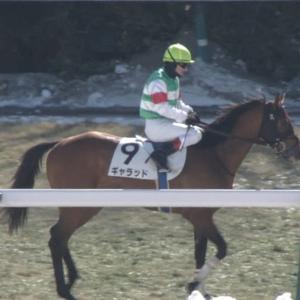 【競馬】東京4レース、ハナ差で審議になるもなぜか降着しないwwwwwwww