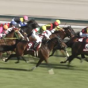 【競馬】7番人気3着が似合う馬