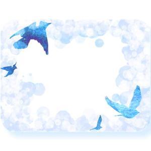 『鳥』の人