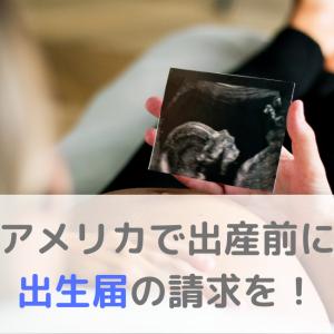 アメリカで出産予定の方必見!早めに大使館で出生届の請求をしよう!【ロサンゼルス】