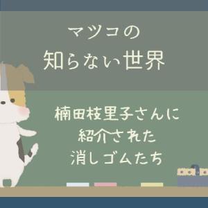 マツコの知らない世界で楠田枝里子さんに紹介された消しゴムたちを検索してみました!