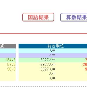 日能研全国テストの結果(小3/6月)