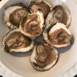【オランダ】牡蠣を買いに行きました