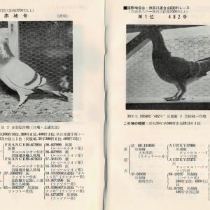 『'65大レース入賞鳩と長距離鳩の総覧』愛鳩の友社 その25