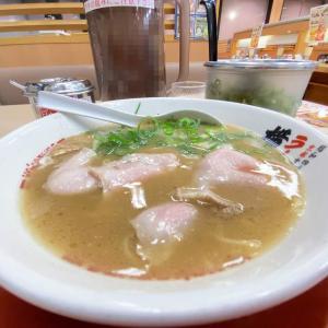 柔らかなチャーシュー、まろやかで後引きの良い豚骨醤油のスープが旨し!