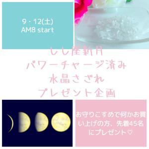 【残17】しし座新月パワーチャージ済♡水晶さざれプレゼント!