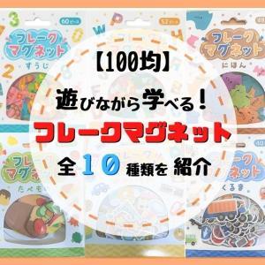 【100均】フレークマグネットは100円なのに遊びながら学べる!